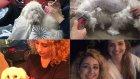 Melisa Beleli Vlog: Benimle Bir Gün, Yummy'nin Traş Günü, Makyaj