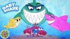 Baby Shark Song - Music for Children - Bebek Köpekbalığı Şarkısı