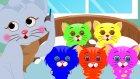 Five Little Kittens | Beş Küçük Kedi Yavruları Şarkısı