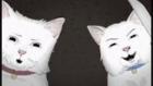 Animals 1. Sezon Tanıtım Fragmanı