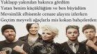 Model -Sarı Kurdeleler Şarkı Sözü Lyrics