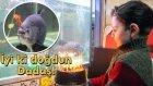 Erzurumlu Piranaya Doğum Günü Kutlaması