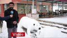 Kardan Kutup Ayısı