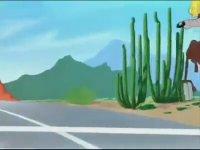 Road Runner Final Bölümü