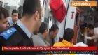 Sakarya'da Ayı Saldırısına Uğrayan Avcı Yaralandı