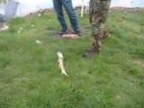 Turna Balığı Avı