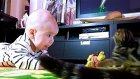 Baby React To Funny Cats / Kedi Videolari