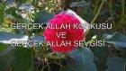 Gerçek Allah Korkusu Ve Gerçek Allah Sevgisi...