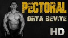 Orta Seviye - Evde Chest - Pectoralis (Göğüs Kası) Antrenmanı / Fitness