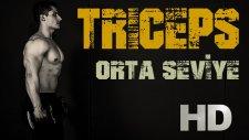 Orta Seviye - Evde Triceps (Arka Kol) Antrenmanı / Fitness