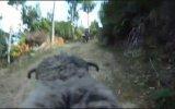 Kızgın Koç & Mazlum Motorcu