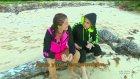 Ünlüler Adasında Gizli Bir Gerginlik Mi Var? ( Survivor 2016 7 Şubat Pazar)