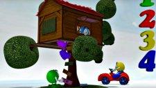 Zeem Zoom - Eğitici çizgi film - Ağaç evi - Sayıları öğreniyoruz