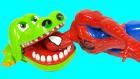 Timsah Croc Dişçide Oyunu ve Örümcek Adam | Angry Birds Big Hero Prenses Sofia Sürpriz Yumurtalar