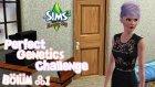 The Sims 3 - Mükemmel Genetik Özellikleri - Bölüm 1 - Yaşanacak Evi Yapmak - berylvenus