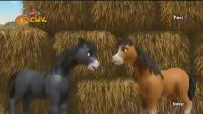 Yılkı Atı Doru - Fedakarlık