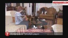 Kiraladığı Evde 70 Kediyle Yaşayan Türk İnsanı