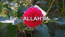 EY... ALLAH'IM...
