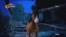 Doru Çizgi Filmi - Saklı Göl
