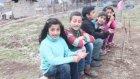 Şırnak'ta Survivor Köyü