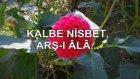 Kalbe Nisbet, Arş-I Âlâ…