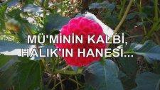 Mü'minin Kalbi, Halık'ın Hanesi...
