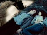 twilight bella & edward