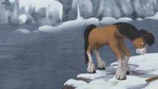 Yılkı Atı 12. Bölüm