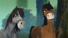 Yılkı Atı 6. Bölüm