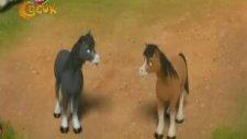 Doru Yılkı Atı - Yumurta (Çizgi Film)