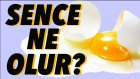 Sence Gazete Kağıdında Yumurta Pişer Mi? - Oha Diyorum