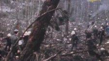 THY 981 Sayılı Seferin Kaza Sonrası Görüntüleri (1974)