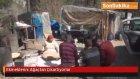Antalya'nın Akseki ilçesi - Ekmeklerini Ağaçtan Çıkartıyorlar