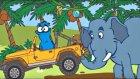 Edi Blue Ormanda - Mutlu Çocuk