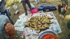 3.2 Kg Aynalı Sazan Ve Tutulan Tüm Balıklar - Ermenek Barajı | Hd