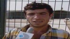 Atılan Taşlarla Öldürülen Timsah (1995)