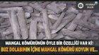 Mangal Kömürünün Öyle Bir Özelliği Var Ki ! : Dünyanın Enleri ?