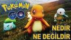 Pokemon GO Hakkında Bilmeniz Gerekenler  -Yesil Devin Maceralari