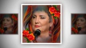 Fatma Arslanoğlu - Âsûde Fikrim Âvârelendi