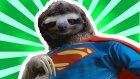 Keşke Bizde De Olsa Dedirten 10 Süper Hayvan Gücü