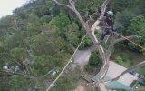 40 Metre Yükseklikte Ağaç Kesmek