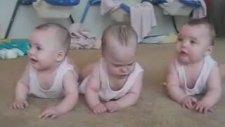Şaşkın Üçüz Bebekler