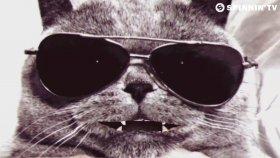Ummet Ozcan - Spacecats