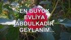 En Büyük Evliya Abdulkadir Geylanim...
