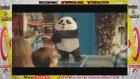 Gülben Ergen Panda Dondurma