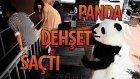 Hayrettin - Panda Dehşet Saçtı