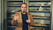 Fosiller Bize Neyi Anlatıyor? Paleontoloji Bilimi Nedir?