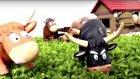 Çiftlikte Hayvanlarla Bir Gün - Mutlu Çocuk