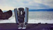 Google İki Ayaklı Yeni Robotunu Tanıttı