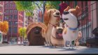 The Secret Life of Pets 2. Fragmanı